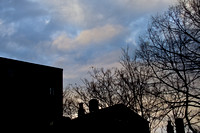 Sycamore St.,Sunset