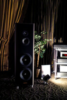 Magico S5 and Soulution