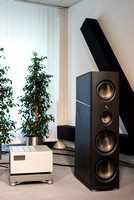 Magico Q7 MkII with Soulution 701 monoblock power amp